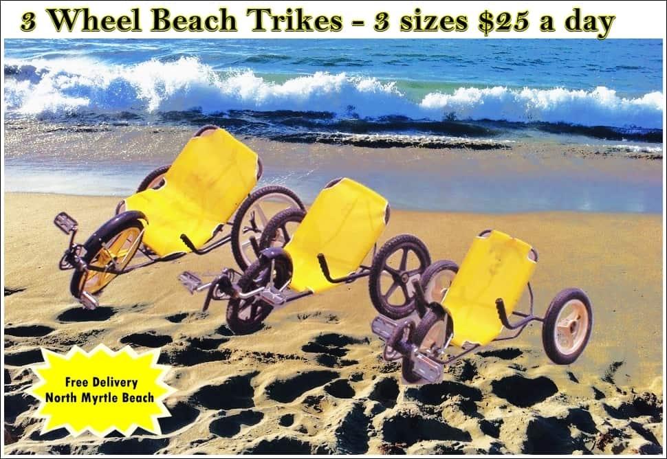 3 Wheel Beach Bike -Adult
